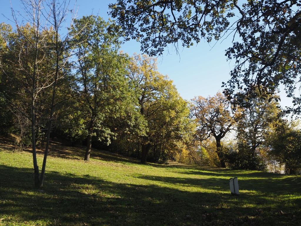 selva di san francesco